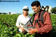 رتبه لازم برای قبولی رشته مهندسی کشاورزی کنکور 97