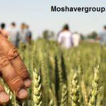 لیست رشته های گروه کشاورزی دانشگاه علمی کاربردی