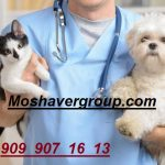 رتبه قبولی لازم پزشکی 98 | حداقل رتبه و درصدهای لازم برای قبولی دامپزشکی سراسری 98
