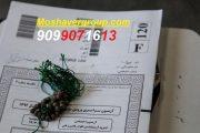 دانلود دفترچه سوالات و پاسخنامه تشریحی آزمون 17 خرداد 98 گاج