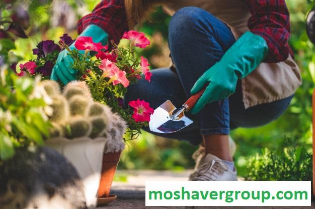 کارنامه و رتبه قبولی دکتری علوم و مهندسی باغبانی