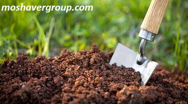 کارنامه و رتبه قبولی دکتری مدیریت حاصل خیزی و زیست فناوری خاک