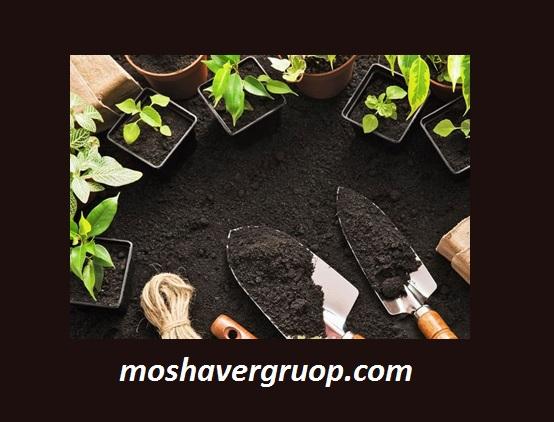 کارنامه و رتبه قبولی دکتری مدیریت منابع خاک